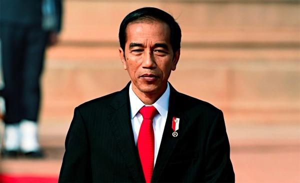 インドネシア大統領「日本よ、一緒にジャワ島横断鉄道を建設しよう」 のサムネイル画像