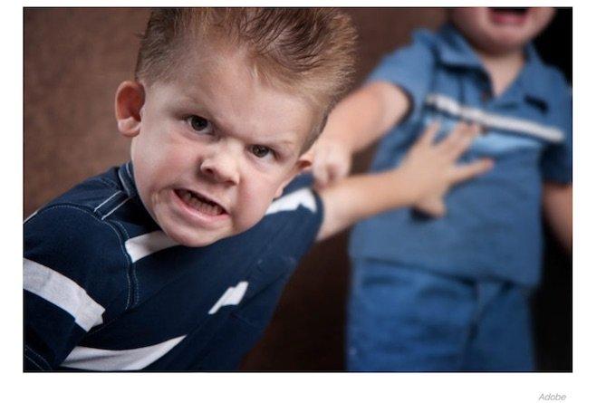 【悲報】第二子として生まれた男は犯罪者になりやすいことが判明のサムネイル画像
