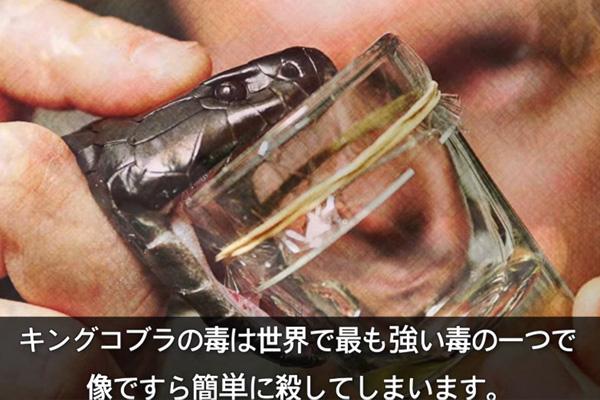 【驚愕】世界で最も高価な液体トップ10が発表されるwwwwwwwwwwwwwwwwwwのサムネイル画像