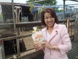 自民党「豊田真由子は可哀想。自民党ではあんなの日常風景。」のサムネイル画像