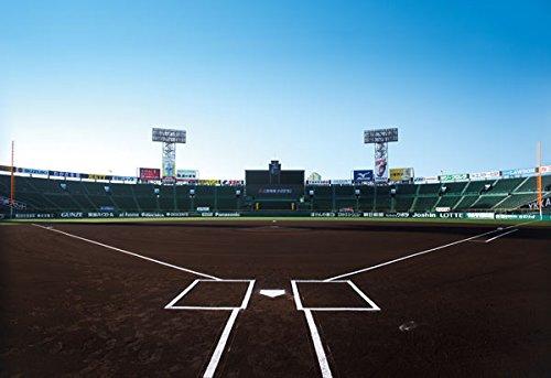日本高校野球連盟「高校球児たちの負担を減らしたい。甲子園でもタイブレークを導入しよう」のサムネイル画像