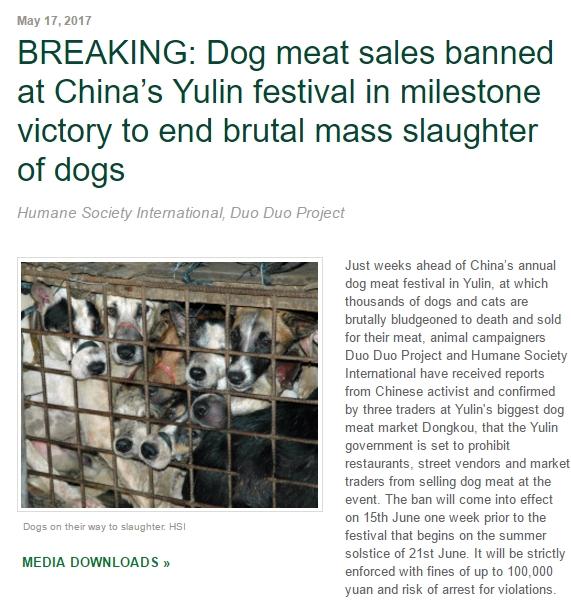 中国人「もう犬を食べるのはやめよう!」のサムネイル画像