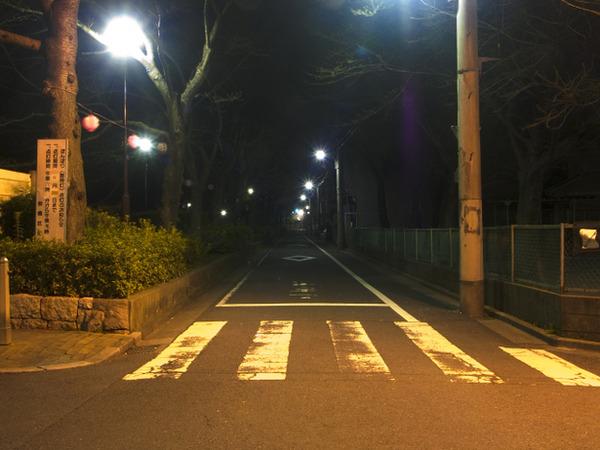 【東京】24歳男「路上で女性と2人きりになり、今なら襲えると思った」 面識のない女性の顔殴り性的暴行のサムネイル画像