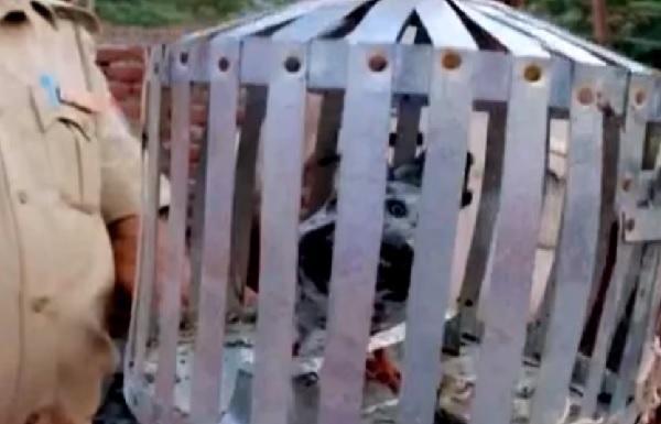 【悲報】インド首相に脅迫状を届けた「ハト」の身柄が拘束されるwwwwwwwwwのサムネイル画像