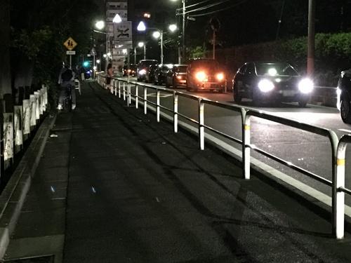 「ポケモンGO」レアモンスターがいるぞ!で世田谷公園が違法駐車だらけに。のサムネイル画像