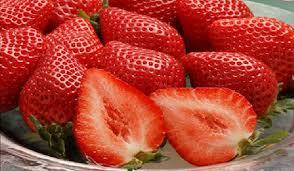 【盗作】韓国の盗作イチゴによる日本の「被害額」がやばすぎるwwwwwwwwwwwwwwwwのサムネイル画像