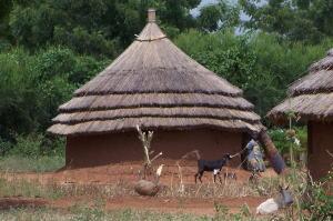 南スーダン、民兵に報酬として「女性のレイプ」許す 国連報告書のサムネイル画像