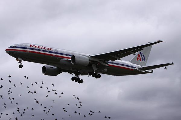 【速報】安倍首相が乗ってる政府専用の飛行機機で事故発生【バードストライク】のサムネイル画像