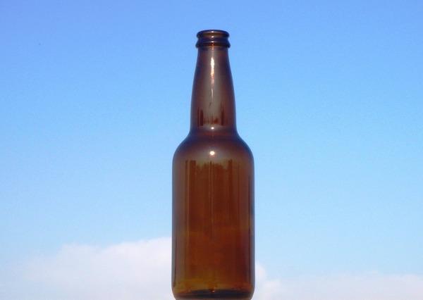 白鵬が証言、日馬の暴行問題「ビール瓶では殴ってない」 のサムネイル画像