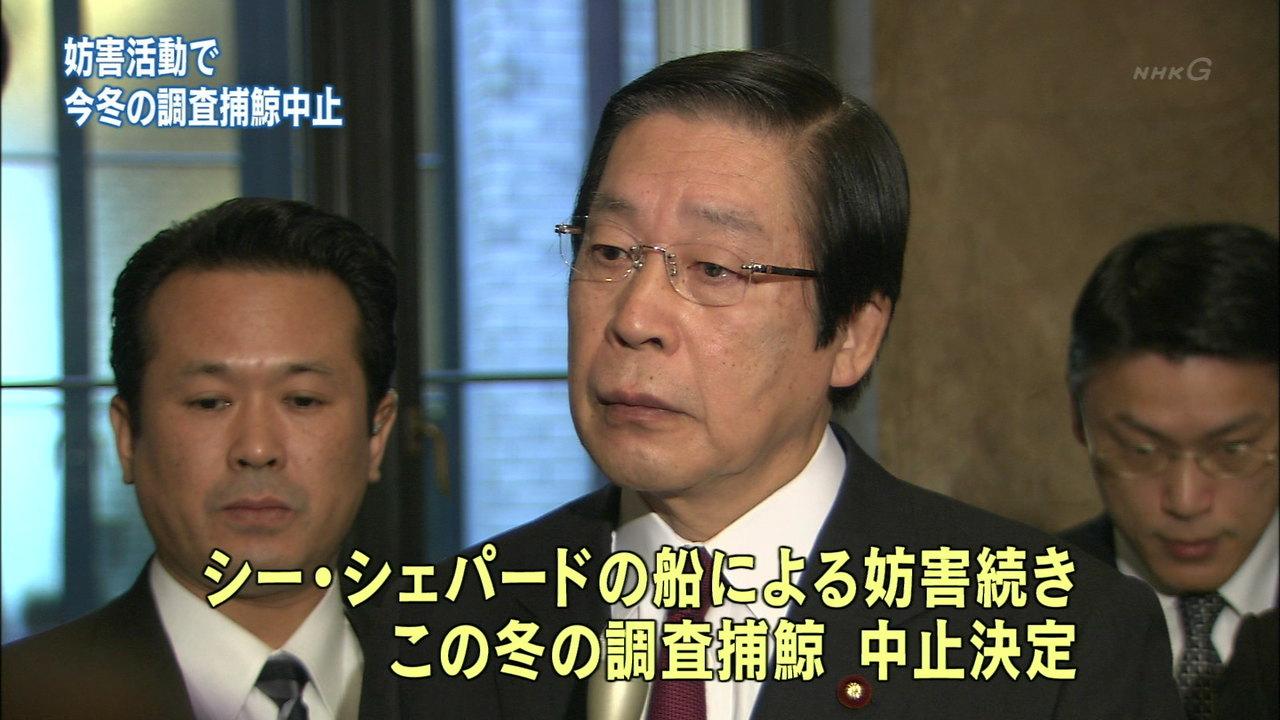日本の捕鯨船、妨害により撤退決定のサムネイル画像