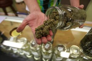 【期待】大麻解禁で税収1000億円wwwwwwwwwwのサムネイル画像