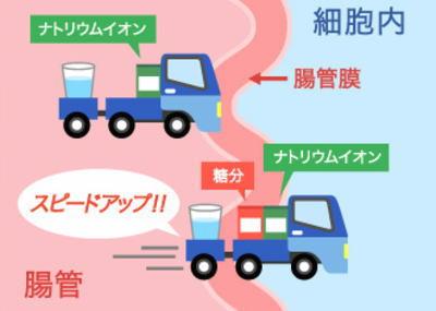【知る】水だけを飲んでいてもダメ?大塚製薬の熱中症解説が分かりやすい(解説図あり)のサムネイル画像