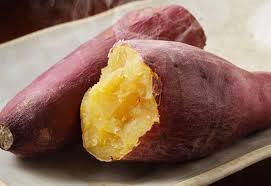 【驚愕】幼稚園児が育てたサツマイモ、根こそぎ盗まれる・・・のサムネイル画像