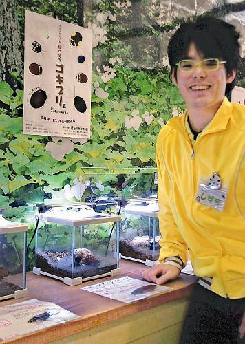 【GKB38】おさわりコーナーあり、人気投票も 静岡でゴキブリ展のサムネイル画像