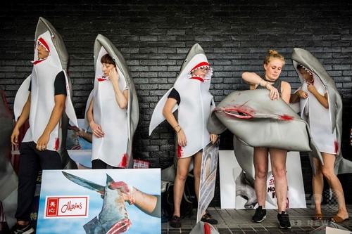 「フカヒレを取るためにサメを殺すな」サメの着ぐるみ姿の活動家ら、香港のレストラン前で抗議運動のサムネイル画像