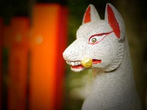 【画像】寺や神社に「神狐」「天狐」などと落書きした男を逮捕。字がハングルっぽいと話題に…のサムネイル画像