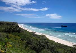 【悲報】世界遺産・英領ヘンダーソン島に日本のごみが大量に漂着・・・のサムネイル画像
