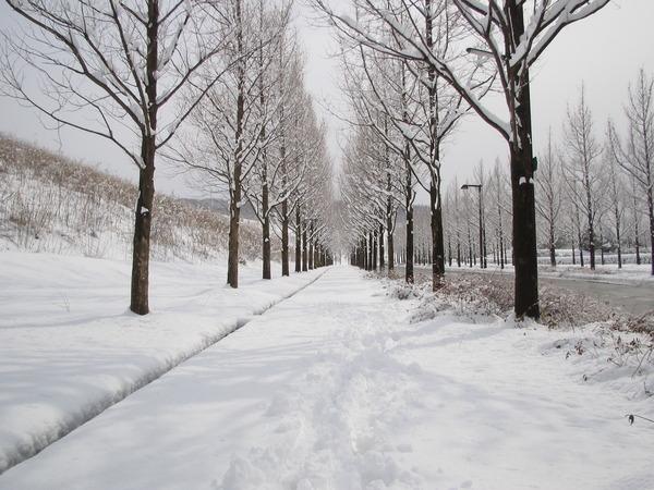 秋田市民「さっさと除雪しろ!税金払ってんだぞ!」→ 結果wwwwwwwwwwwのサムネイル画像