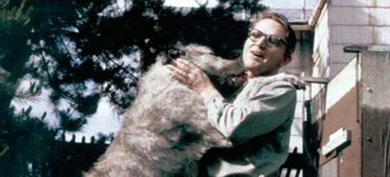 【画像】「死が二人を隔てても、骨になってまた再会。」犬を愛した科学者の遺言のサムネイル画像