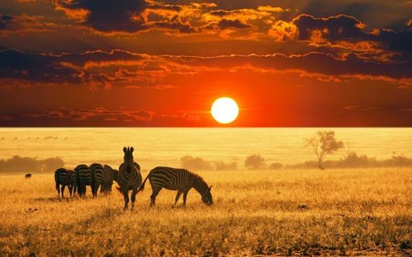 国連機関「日本よ、アフリカの農村を支援してくれ。テロ対策になるぞ」のサムネイル画像