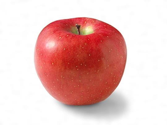 【悲報】日本の「リンゴ」中国への輸出が止まっている理由wwwwwwwwwwwwwのサムネイル画像
