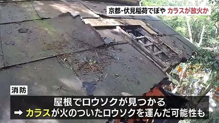 【衝撃】京都・伏見稲荷、ほこらの屋根から出火 → その犯人wwwwwwwwwのサムネイル画像