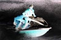 水上バイクで転倒→噴き出す水が肛門から入り女性死亡 注意呼びかけのサムネイル画像