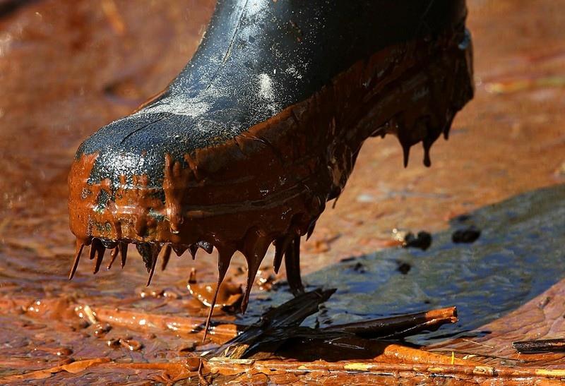 メキシコ湾原油流出事故の画像39枚 この画像の詳細を教えてプリーズより(VIP)のサムネイル画像