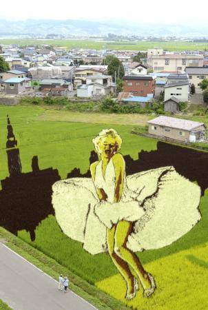 【青森】 「あんれまあ、マリリンモンローでねえが!」 夏の津軽平野に出現(画像)のサムネイル画像