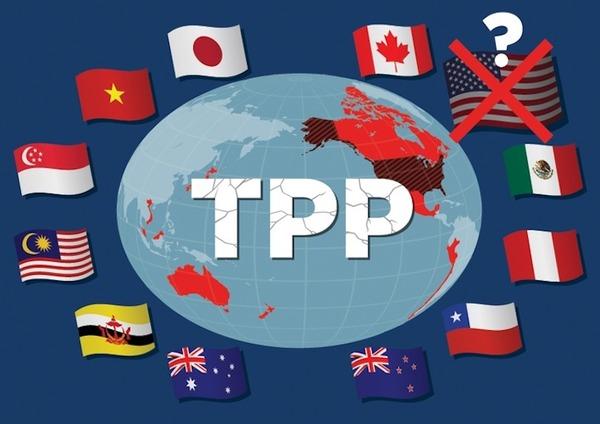 【速報】アメリカ、TPPの復帰を検討へwwwwwwwwwwwwwwwwwのサムネイル画像