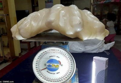 デカすぎワロタwwwフィリピンで世界最大とされる真珠が発見される。約100億円の価値のサムネイル画像