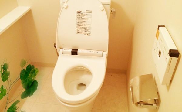 【悲報】自分の家のトイレで下半身を露出したとしてオッサン逮捕wwwwww 見なきゃいいだろwwwwwのサムネイル画像