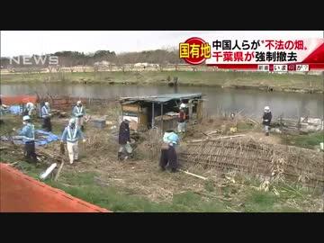 【朗報】中国人らが河川敷を10年以上不法占拠 → 立ち退き応じず強制撤去、国有地で農作業とかwwwwwwwwwのサムネイル画像