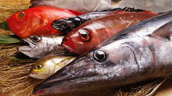【朗報】魚をよく食べる子ども、IQと睡眠の質が向上!!!のサムネイル画像