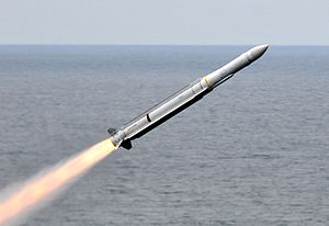 RIM-162_ESSM_launched_from_USS_Carl_Vinson