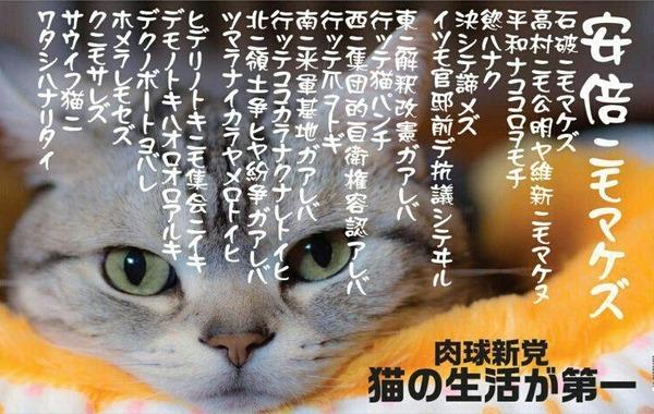 【衝撃】猫好きが結集する「肉球新党」猫の生活が第一 「原発反対、共謀罪反対、改憲反対、安保反対!!!」のサムネイル画像