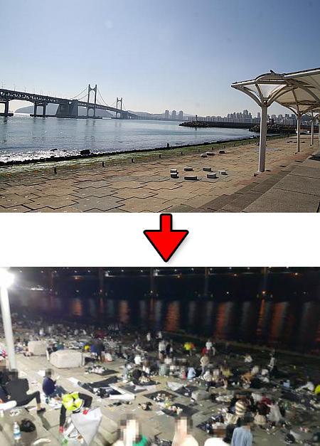【悲報】海辺の綺麗な「公園」で飲み食いした結果wwwwwwwwwwwwwwwwのサムネイル画像
