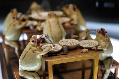 よく見るとかわいい? カエルの剥製で人間の暮らしを再現する博物館のサムネイル画像
