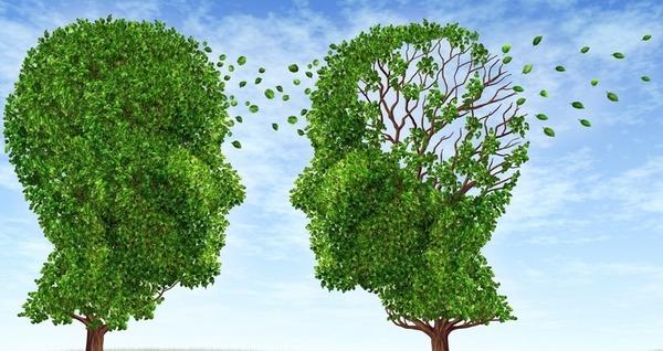 ビタミンB3(ナイアシン)は統合失調症に効くと判明wwwwwwwwwwwwwwwwのサムネイル画像