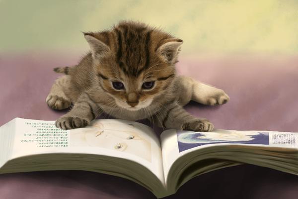 【話題】お前ら月に本何冊読む? 俺は洗脳されるのが嫌だから1冊も読まない のサムネイル画像