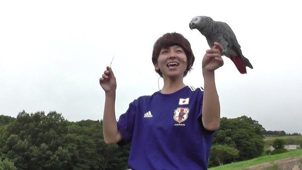 【驚愕】的中率8割! インコの「オリビア」が日本代表初戦の勝敗を占った結果wwwwwwwwwwwwのサムネイル画像
