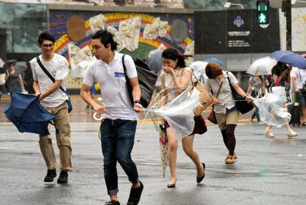 【台風21号】トタン屋根、強風で飛ばされとんでもない場所に突き刺さってしまう・・・・・・・・・のサムネイル画像
