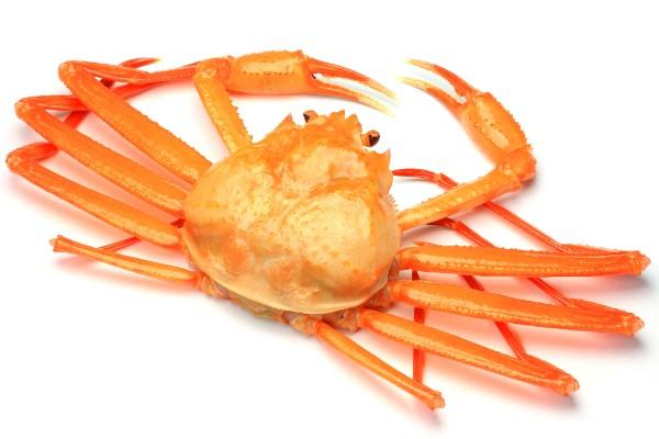 【愕然】アメリカ「韓国産の貝類缶詰は販売禁止な!」→ 理由がwwwwwwwwwwwのサムネイル画像
