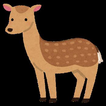 animal_nihonjika