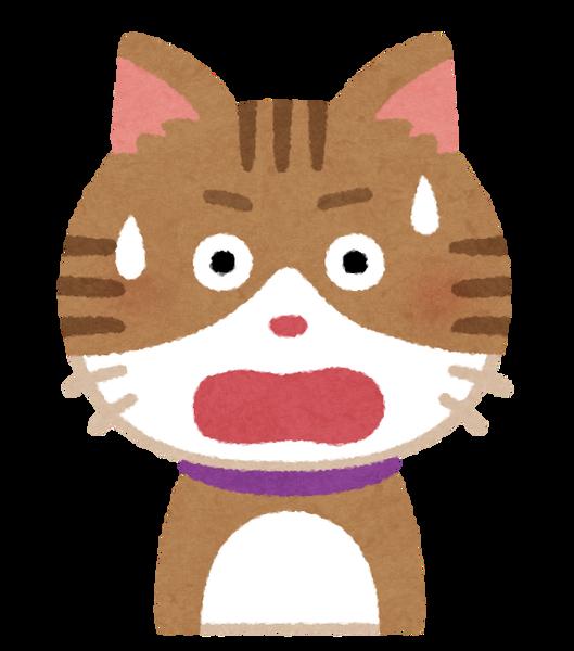 【三重】行方不明だった猫さん、とんでもない姿になって発見される・・・・・のサムネイル画像