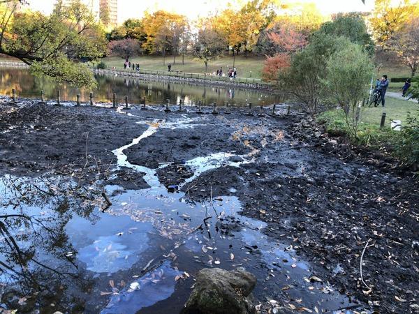 【衝撃】「池の水を全部抜く」にAKB48が参戦した結果wwwwwwwwwwww