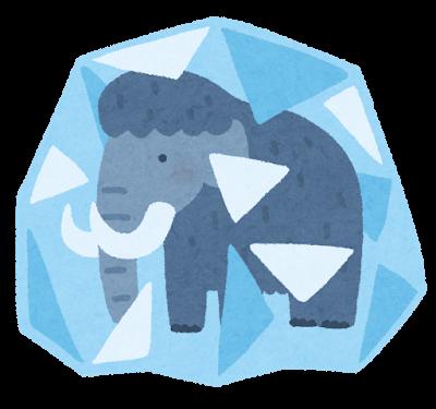mammoth_kooriduke