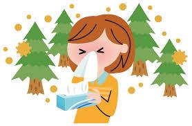 ガチで効果があった花粉症対策wwwwwwwwwwwwwwwwww