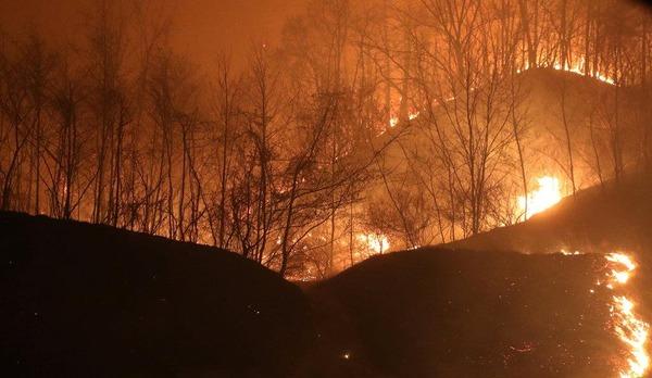 """【悲報】山火事さん、韓国を""""こ ん な に も""""燃やしてしまう・・・・・・(画像あり)のサムネイル画像"""