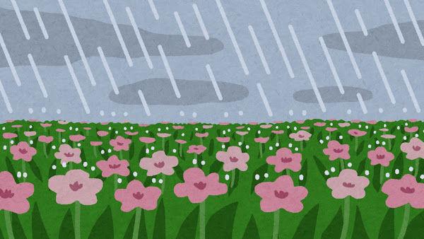 【大雨】千葉テレビさん、泣いてしまう・・・・・のサムネイル画像